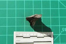 Meteorite Sikhote-Alin- SKA-138 - 9.01g - GORGEOUS!!!