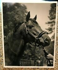 Seabiscuit at Ridgewood - photo by KD Reynolds - 1940