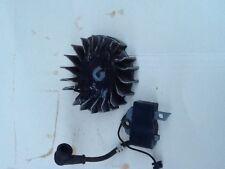 Echo cs 370/400 flywheel and coil