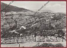 MILITARE ALBANIA MONASTIR - CIMITERO CROCI SOLDATI ITALIANI Cartolina viagg 1942