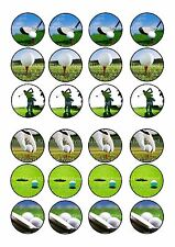 24 icing cake toppers decorations fairy bun ND2 golf ball buggy club