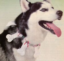 CUTE Doggie Bone Christmas Collar/Apparel/ Crochet Pattern INSTRUCTIONS ONLY