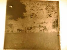 Antique GLASS PLATE - PHOTOGRAPHIC PLATE, c1900, HORSE DRAWN WAGON, Street Scene
