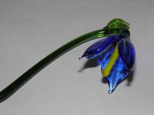 Spring Flower Bellflower Blue Thuringian Glas Lauscha Cursdorf Lutz Neumann