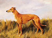 GREYHOUND CHARMING DOG GREETINGS NOTE CARD LOVELY STANDING DOG