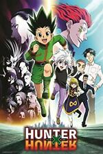 "Hunter X Hunter Anime Poster - Group - 24"" x 36"""