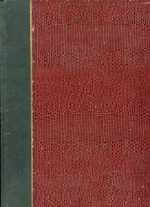 Interessante Europa-Sammlung mit Klassikausgaben im Steckbuch (682)