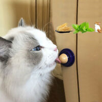 Cat Snacks Catnip Sugar Candy Licking Food Solid Nutrition Energy Ball Toys 1pc