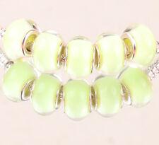 5pcs SILVER MURANO bead LAMMWORK fit EuroMean Charm Bracelet B#45