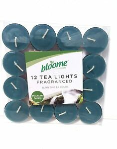 Pack of 12 Bloome Scented Tealights- Mountain Spring