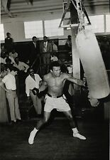 PHOTO BOXE VINTAGE : MUHAMMAD ALI training 1970 Cassius Clay GSP 02