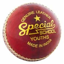 Youths Special School cricket ball readers