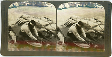 Stereo Canada, Fraser River, Siwash Indian splitting salmon for drying, B.C., 19