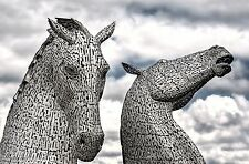 """LARGE THE KELPIES SCOTLAND HORSE HEAD CANVAS WALL PICTURE FLASH ART 30""""20"""" 0604"""