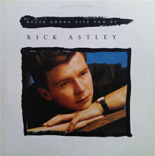 """Rick Astley – Never Gonna Give You Up  12 """"Vinyl Cake/Radio Dance Mix"""