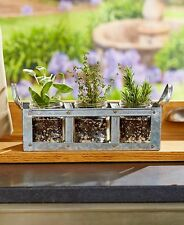 3-Jar Galvanized Mason Jar Planter Small Flowers Plants Herb Garden Home Decor