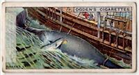 Sharks Attacking A Dead Whale  Tied To Whaling Ship 1930s Ad Trade Card