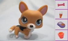 Littlest Pet Shop Dog Puppy Corgi Diamond 639 and Free Accessory Authentic Lps