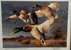 Robert Steiner 1996 California Duck Stamp (Framed Medallion Print) # 32/500