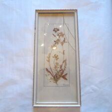 Cadre avec feuilles et fleurs séchées – verre cassé – signé « Hansen »  Hauteur