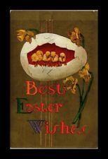 DR JIM STAMPS US BEST EASTER WISHES CHICKS EGG TOPICAL GREETINGS POSTCARD