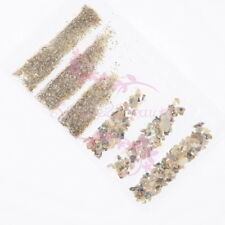 Natural Crushed Abalone Shell Seashell Slices Summer Nail Art Manicure DIY Decor