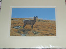 PHOTO ART MOUNTAIN GOAT MT EVANS CO 5X7 MATTED TO 8X10 SIGNED #'D 36/125