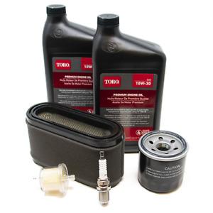 Toro Single Cylinder RePower Kit (132-4877) SHIPS FREE