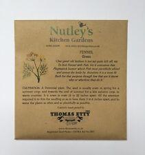 Nutley's Thomas Etty unusual & heritage herb seeds Fennel