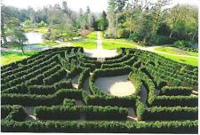 Cliveden, Buckinghamshire - The Maze & Water Garden - postcard
