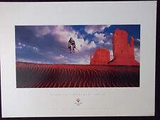 DOWNHILL SKIING  SLC 2002 Olympic Poster  Sports Series