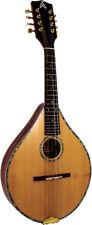 Ashbury Style S Mandolin Celtic Folk Flatback Solid Top Case. From Hobgoblin