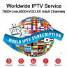 IP TV Subscription 12 Months Smarters Pro Smart TV Android Box MAG Adult M3U