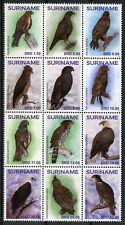 Suriname 2018 MNH Birds of Prey Eagles Hawks 12v Block Roofvogels Bird Stamps