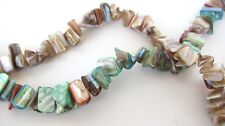 *TWO* Strands Abalone Shell Chips Beads Blue Dyed Tan 10mm 15inch Strand C51-10