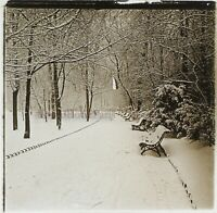 Paesaggio Invernale Giardino Neige c1910 Foto Stereo Placca Da Lente VR12f
