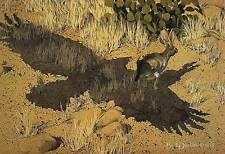 """*Bev Doolittle """"ESCAPE BY A HARE""""-Collector-Indian-Native American-Rabbit-Art*"""