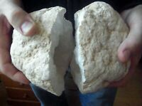 PAIR  QUARTZ SELENITE CRYSTAL WHITE GEODE LARGE 200mm FERTILITY  SAHARA DESERT