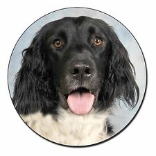 Munsterlander Dog Fridge Magnet Stocking Filler Christmas Gift Ad-ml1fm