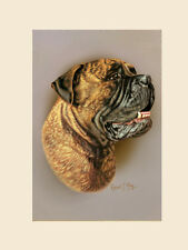 Original Bullmastiff Head Study Painting by Robert J. May