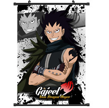 Anime Fairy Tail Gajeel Scroll Wall poster Gift Collection  40x60CM HJKL,KJ