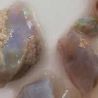 55.45CTS LOT *VIDEO Crystal OPAL NOBBY / ROUGH / RUB / SPECIMEN Lightning Ridge