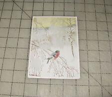Vintage T. Kittelsen (Norweigian Artist) Unposted Robin - Finch Bird Postcard