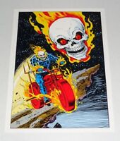 Rare vintage original 1978 Marvel Comics Ghost Rider comic book art poster pinup