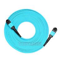 5M MPO Female 12 Fibers Type B OM3 50/125 Multimode Elite Trunk Cable Aqua