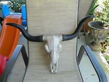 BULL SKULL STEER COW LONGHORN TEXAS SOUTHWESTERN DECOR RANCH HOUSE HOME