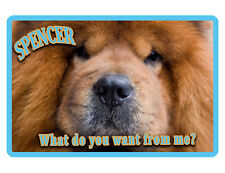 PERSONALIZED PET SIGN YOUR PHOTO/TEXT ALUMINUM FULL COLOR CUSTOM ART PANEL 6