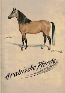 Frielinghaus, Bilke, Arabische Pferde, Araber, v. Verein Züchter u Freunde, 1952