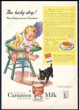 1944 Scottie dog puppy Scottish Terrier art Carnation Milk vintage print ad