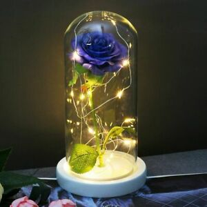 Eternal Rose Flower The Beauty And Beast Rose In A Glass Valentines Day  Gift